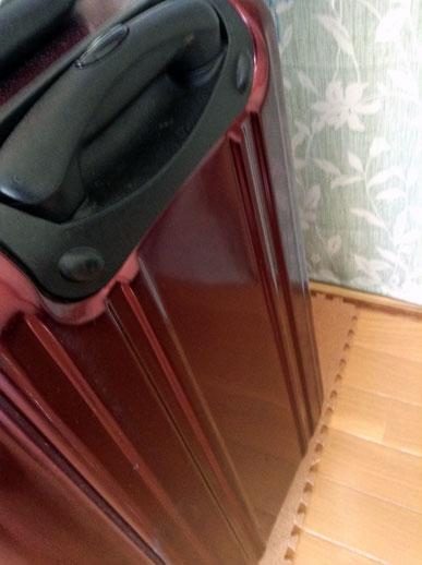 大容量のキャリーバッグ