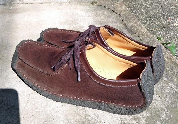 今回洗う靴