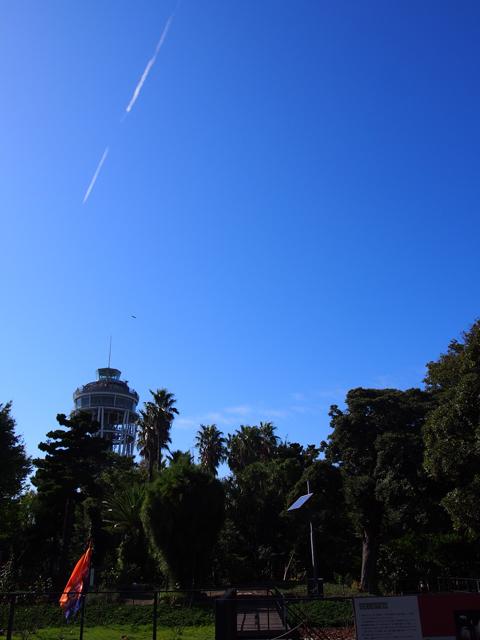 展望台と飛行機雲
