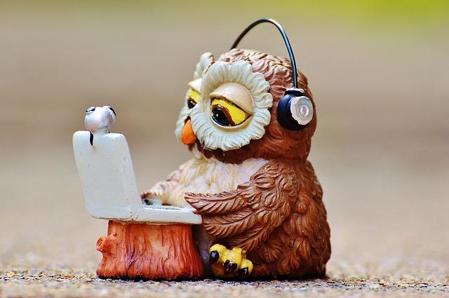 パソコンを触るフクロウ