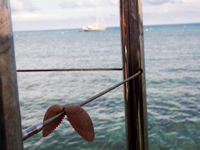 貝殻とニューカレドニアの海