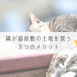 寝ている猫屋敷の猫